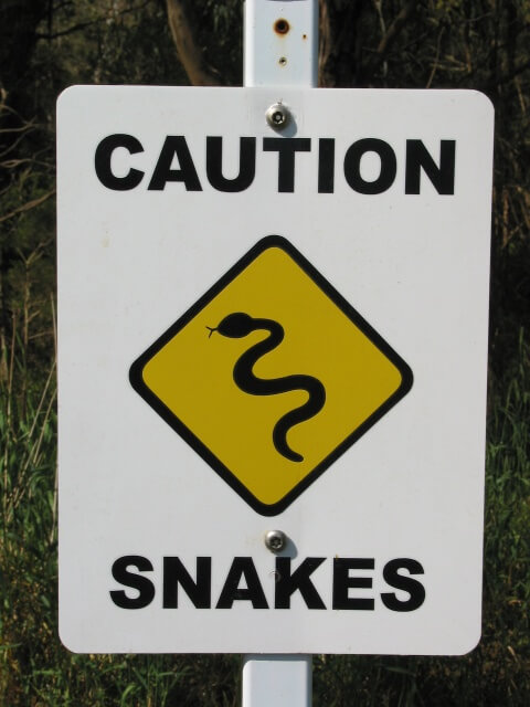 Snakes - Safety advice from Alma St Vet Hospital